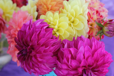 pink and yellow flowers at the farmers market