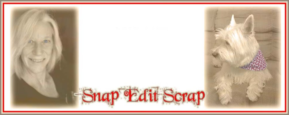 Ann's Snap Edit Scrap