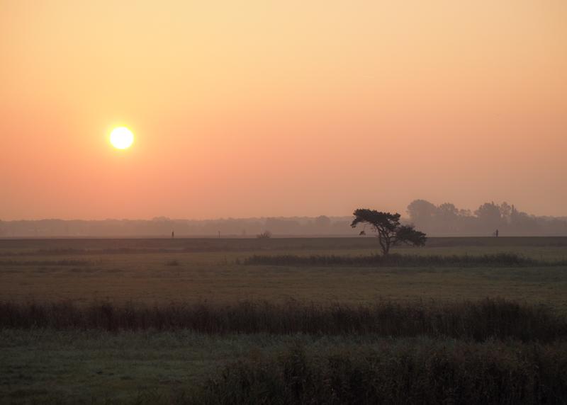 Sonnenaufrgang über dem Darß