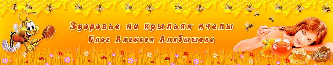 Здоровье на крыльях пчелы. Блог Алексея Алябышева