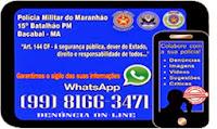WhatsApp Denúncias