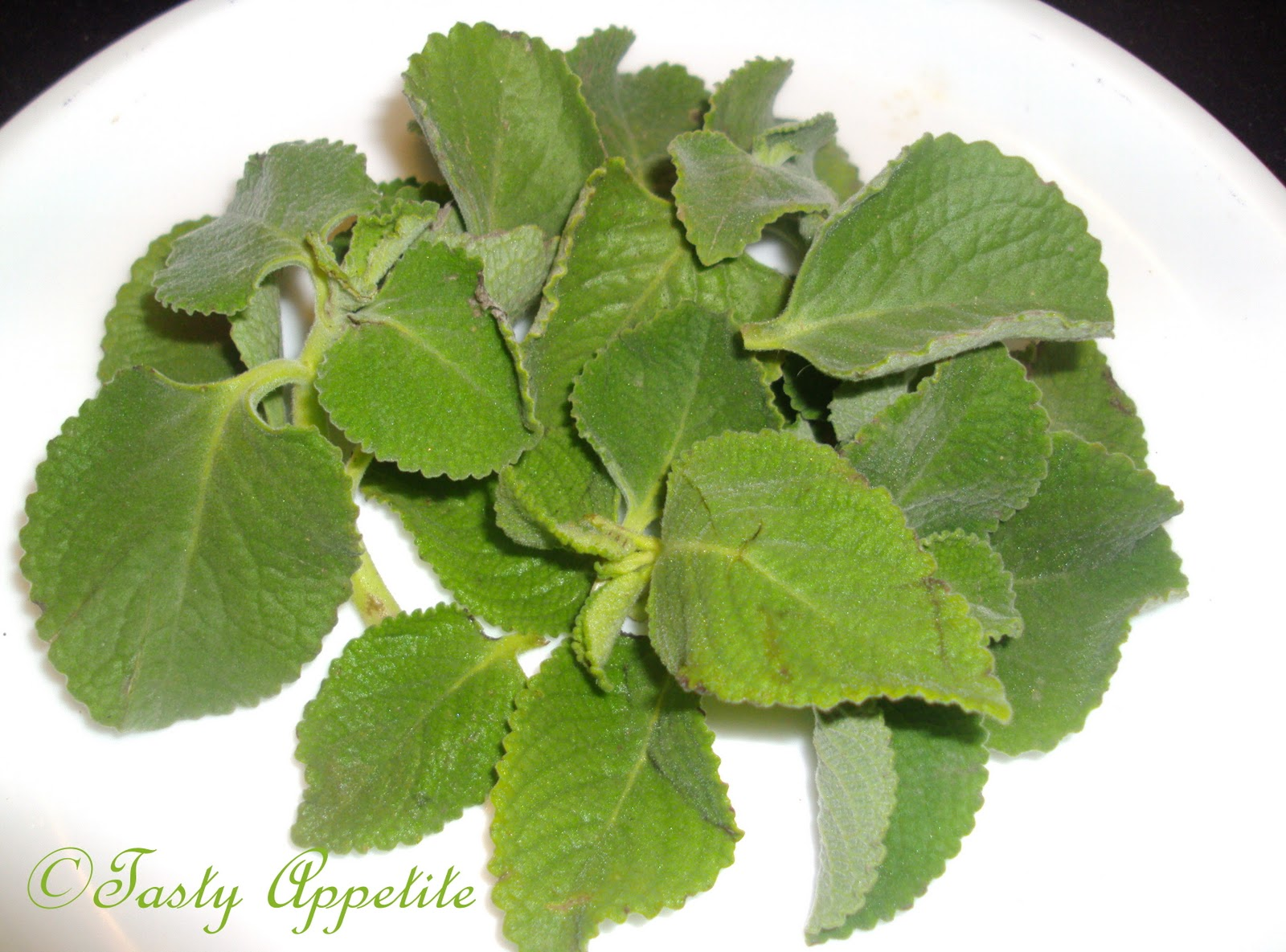 Karpooravalli / Ajwain Leaves Thuvaiyal