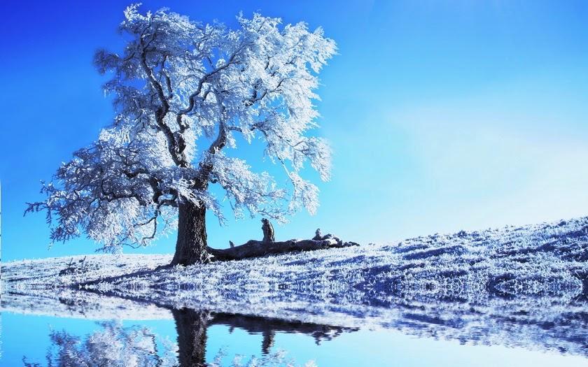Imágenes de bonitos paisajes de invierno - Fotos Bonitas de Amor ...