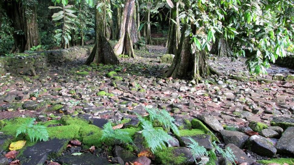 Marae Ti'i Rua du domaine d'Opunohu à Moorea - Sanctuaire de Polynésie