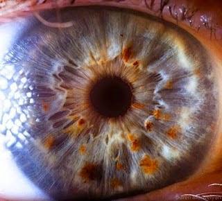 Menakjubkan! Beginilah Bentuk Mata Jika di Foto Dengan Detail