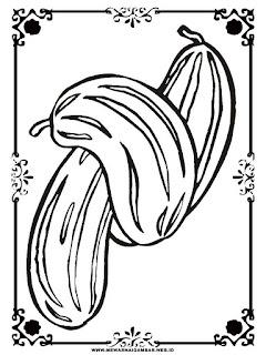 sketsa gambar ketimun untuk diwarnai