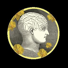 The Contemplative Mind