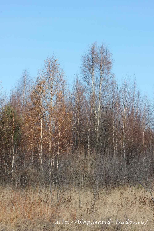 Осень. Осенние пейзажи