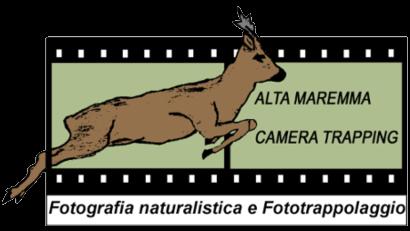 Alta Maremma Camera Trapping
