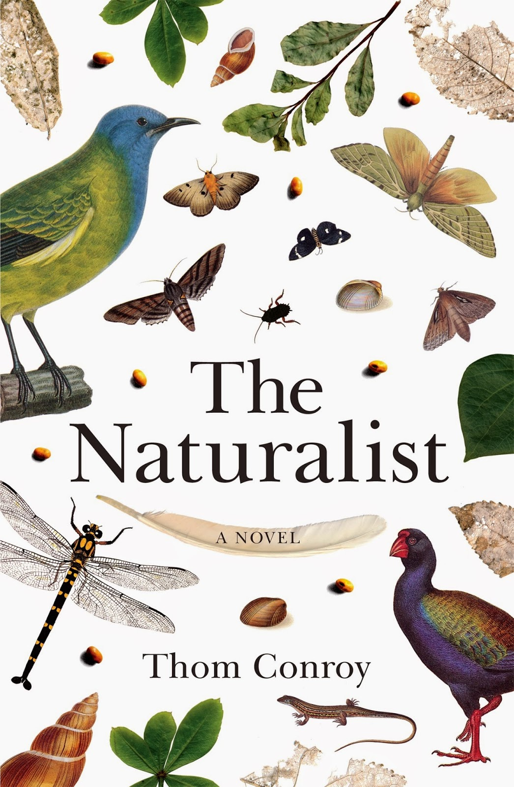 naturalist writers Naturalism definition, a manner or technique of treating subject matter that presents, through volume of detail, a deterministic view of human life and actions see more.