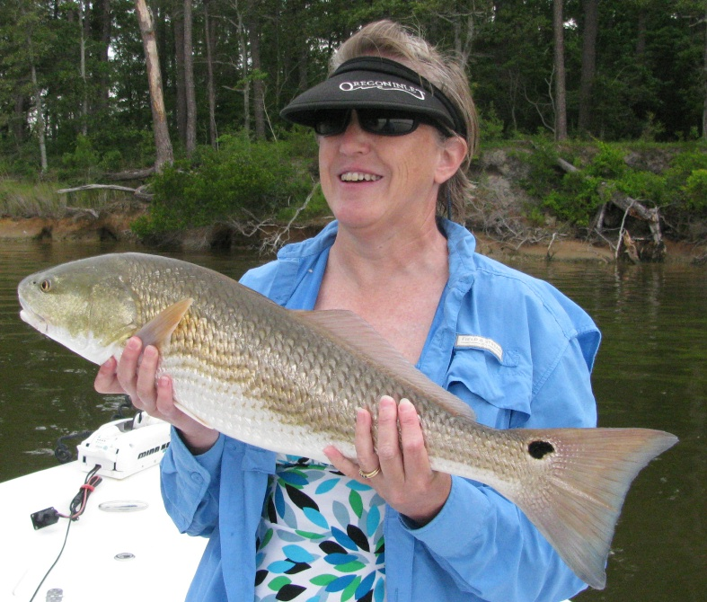 Degs fishing report neuse river sight casting reds for Neuse river fishing