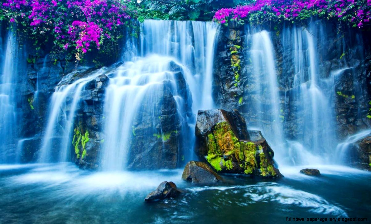 live waterfall wallpaper full hd wallpapers