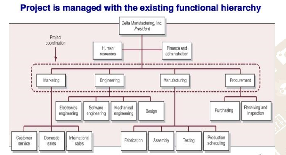 nur 587 organizational structure and function project Organizational structure and function assess the effect of organizational structure on organizational function describe the effect of the human resource department on organizational structure and function.