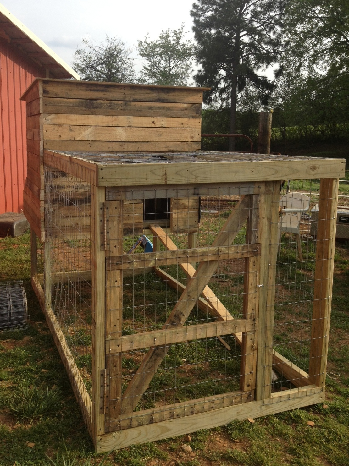 Southern sunflower seeds backyard chicken coop for Pallet chicken coup