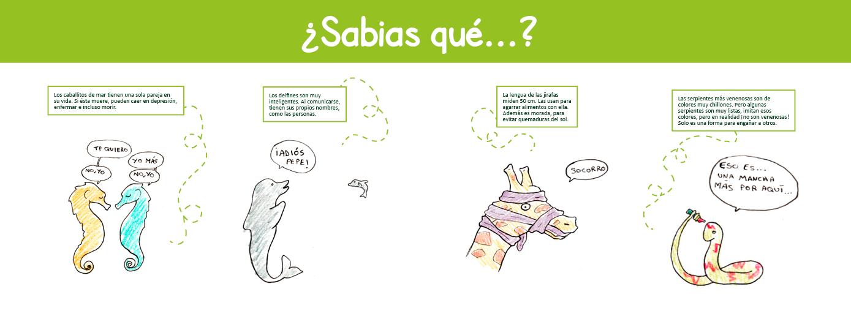 Folleto Para Zoo Proyecto Ficticio