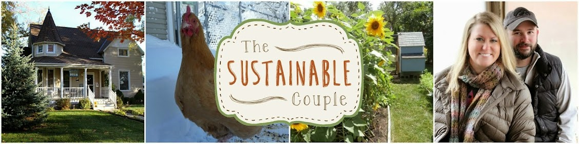The Sustainable Couple