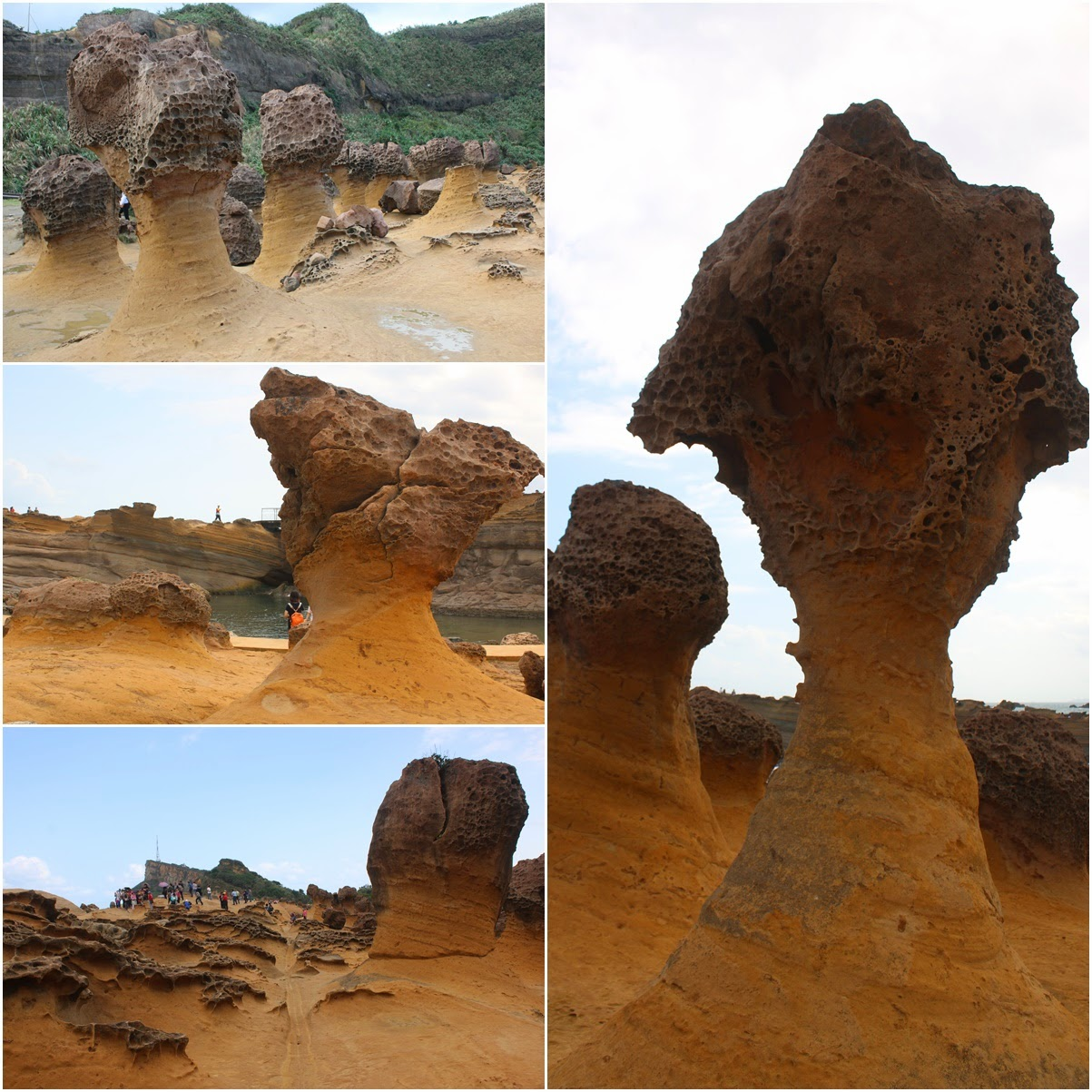 The evolution process of mushroom rocks at Yehliu Geopark in Taiwan