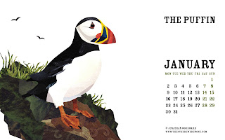the puffin January Wallpaper for Desktop Background