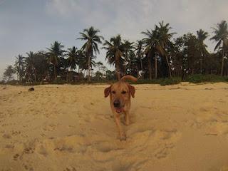 Boom-Patar-Beach-Bolina-Pangasinan-1
