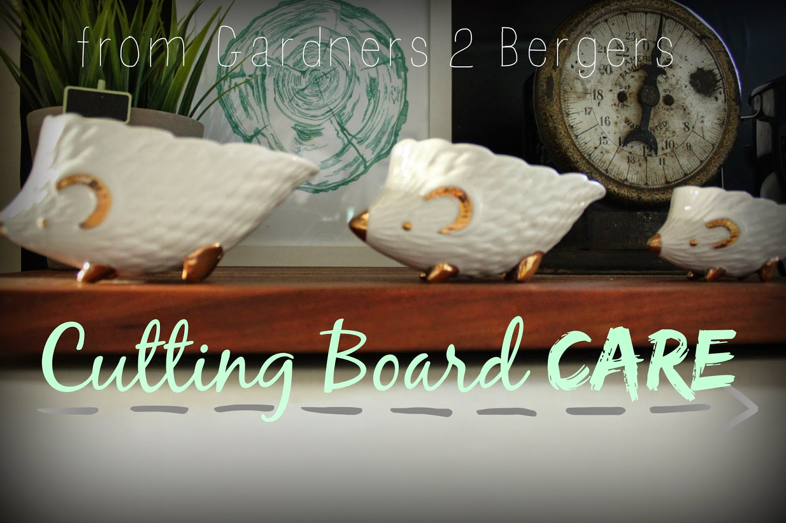 Cutting-Board-Care