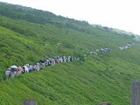 西の遊歩道のお花畑を見ながら頂上に向かう人たち