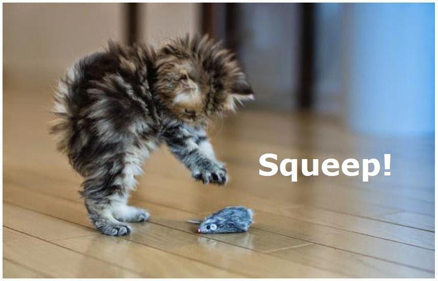 Squeep!