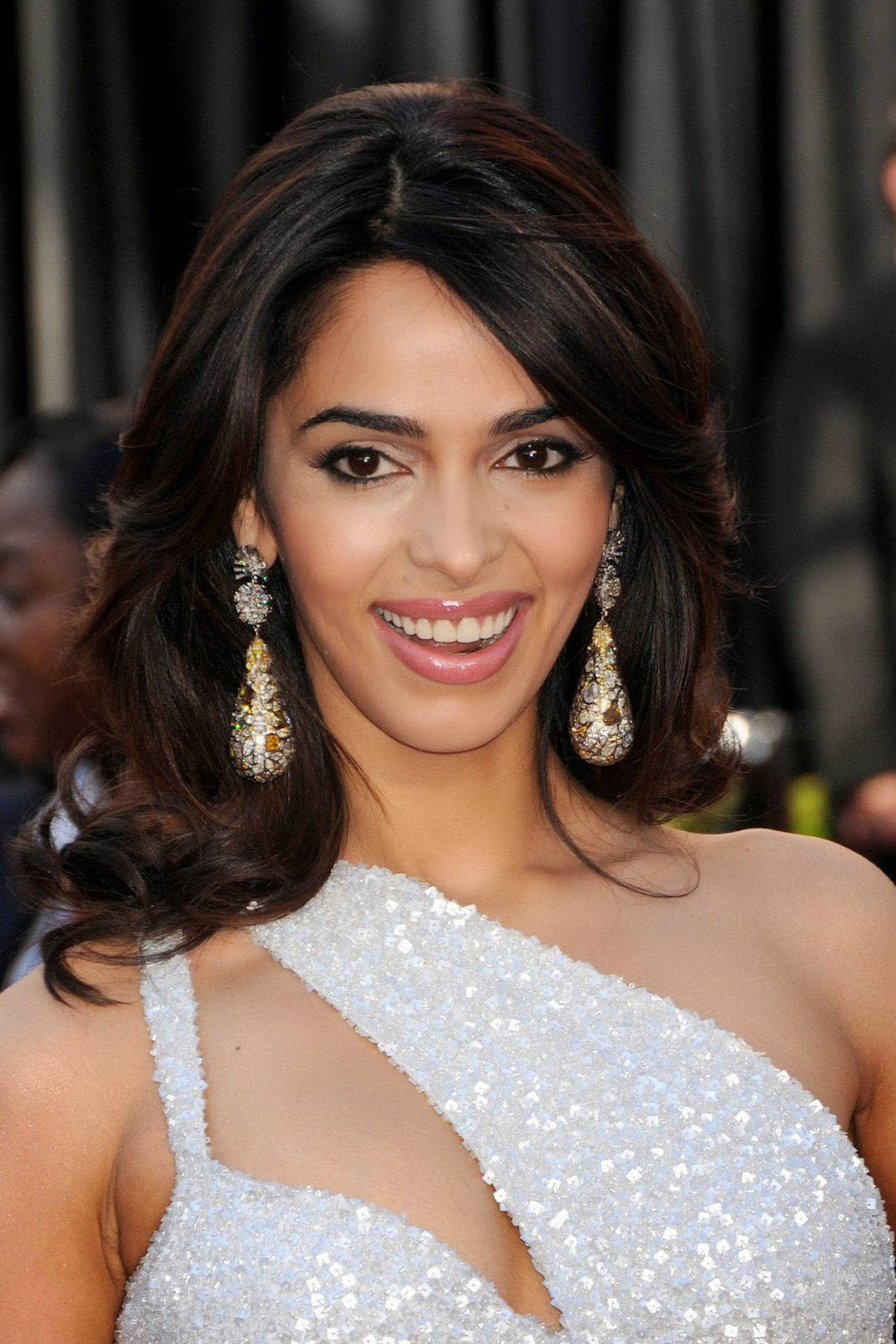 mallika sherawat | hd wallpapers (high definition) | free background