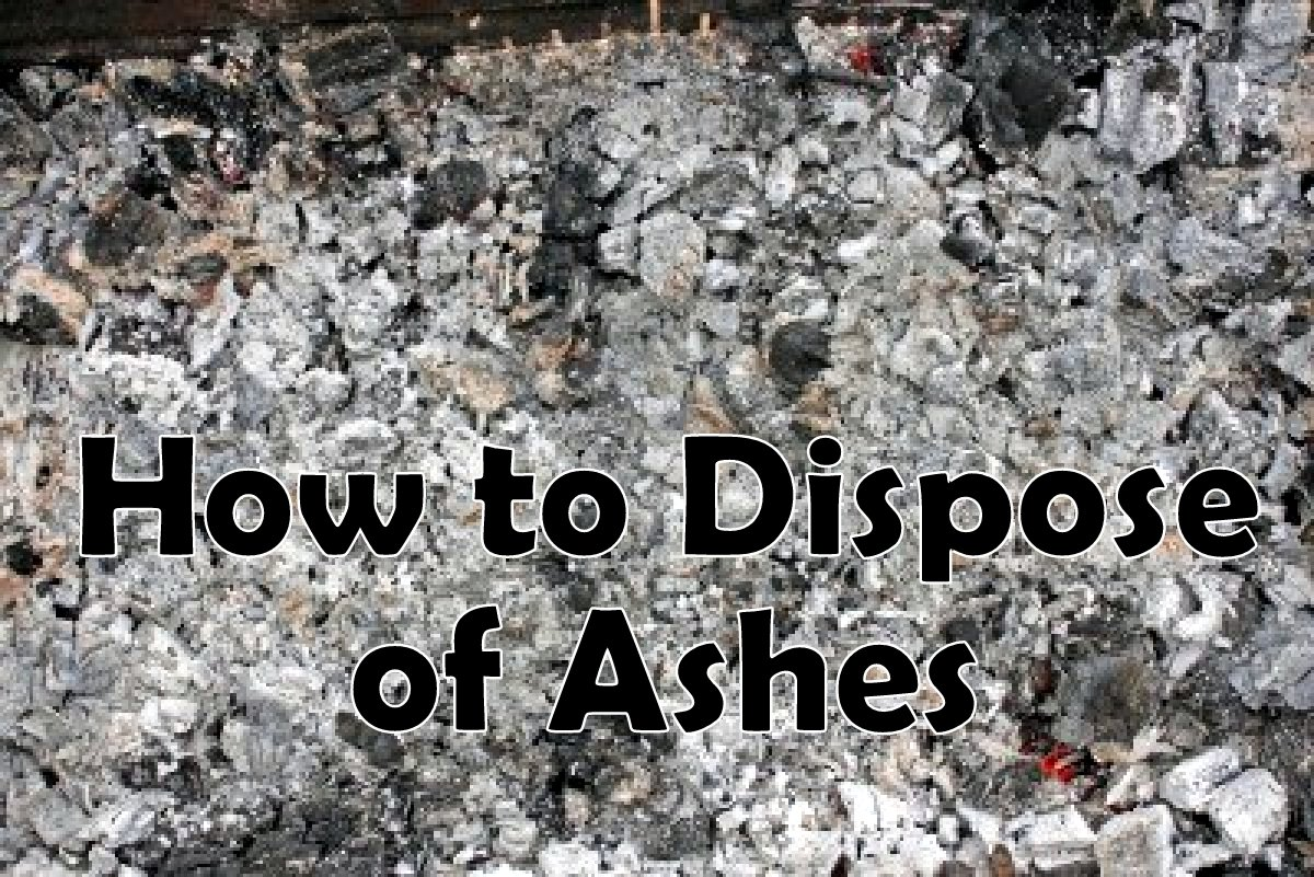 Best Way To Dispose Fireplace Ashes What Can You Do