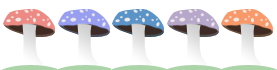5 shrooms