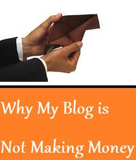 Why My Blog is Not Earning?