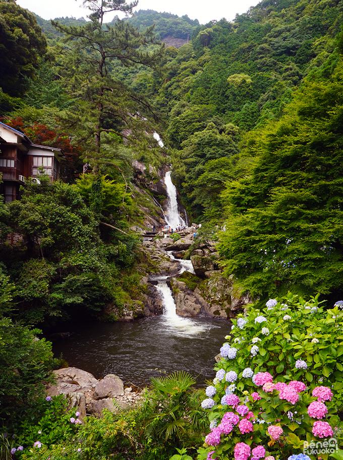 Mikaeri Falls // 見帰りの滝