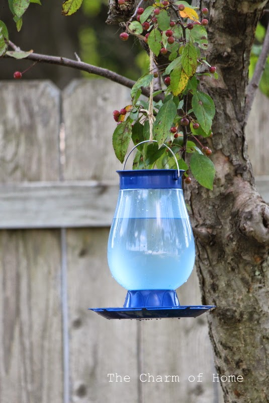 The Charm of Home: Bird Waterer