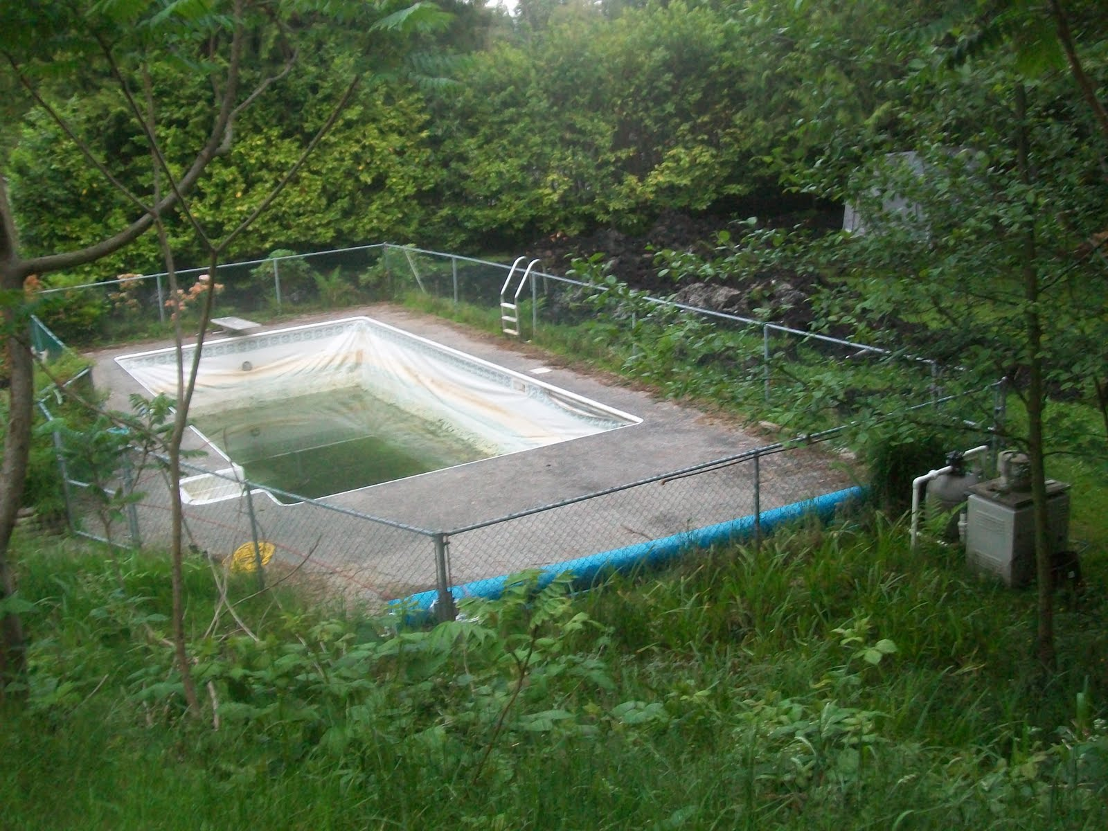 Solar pit greenhouse for Swimming pool greenhouse