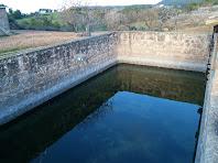 La bassa de Cal Magí de les Alzines