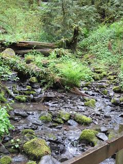 Tryon Creek - Where water fairies live