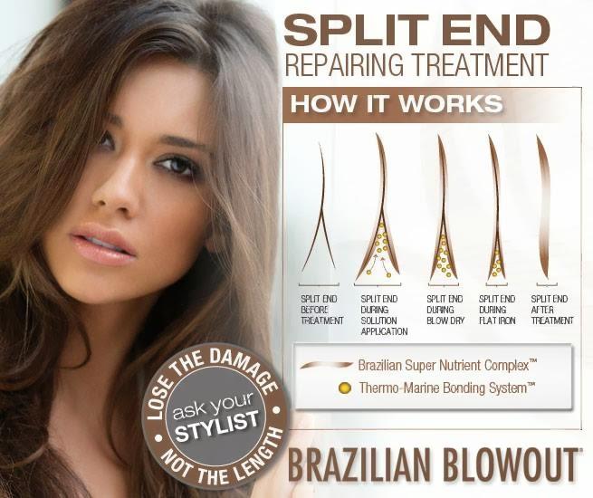 Brazilian Blowout Blog NEW Brazilian Blowout Split End