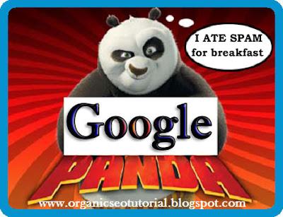 organic seo tutorial google panda algorithm