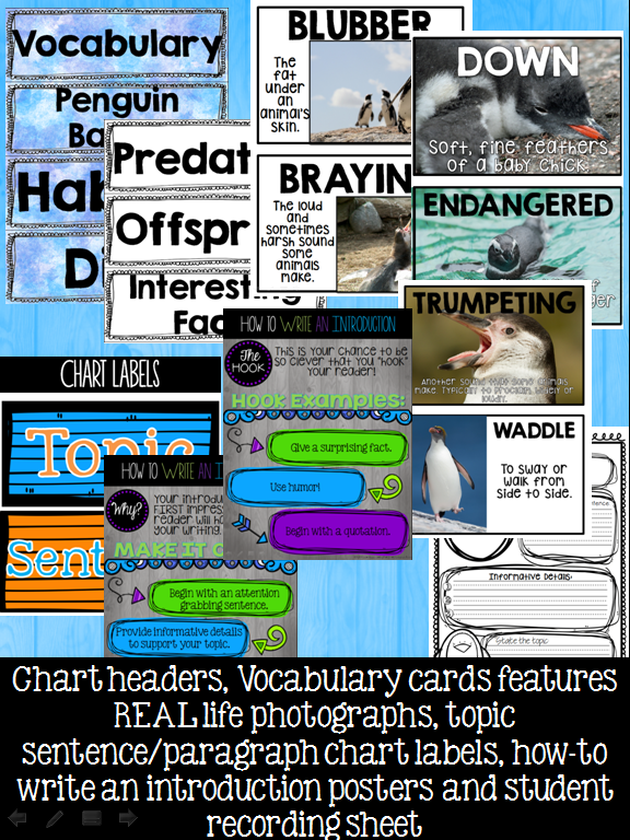 https://www.teacherspayteachers.com/Product/Black-and-White-Tie-Affair-a-Penguin-Informational-Research-Writing-Event-1722459