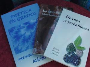 Mis libros y Una antología en la que participo