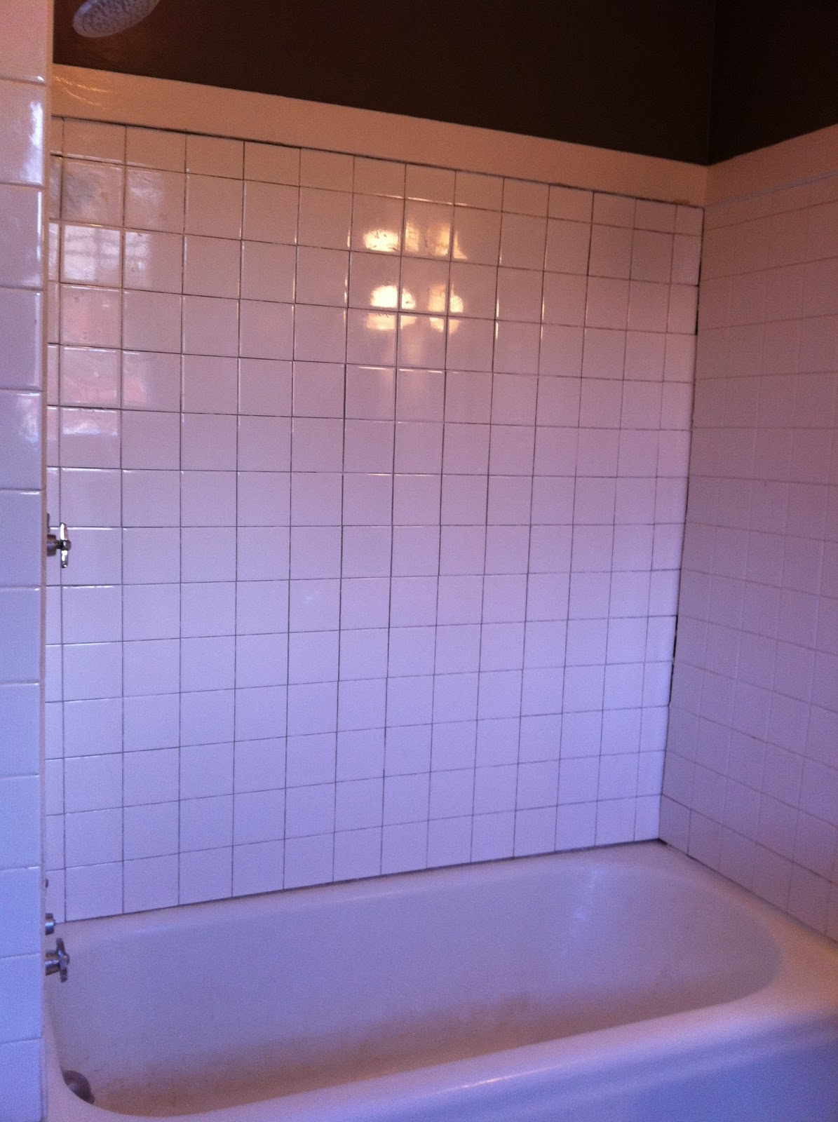 Dwell And Tell Bathroom Progress Retiling Shower Wall Part 2