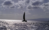 Another high quality wallpaper with 1920x1200 screen resolution. Sail boat wallpaper.