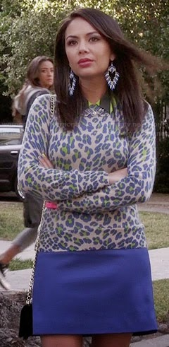 Mona's Blue & Green Leopard Print Sweater