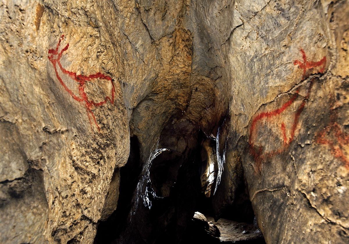 Patrimonio de la Humanidad: Cueva de Altamira y arte rupestre paleolítico del...