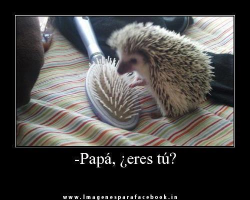 Papá ¿Eres tú?