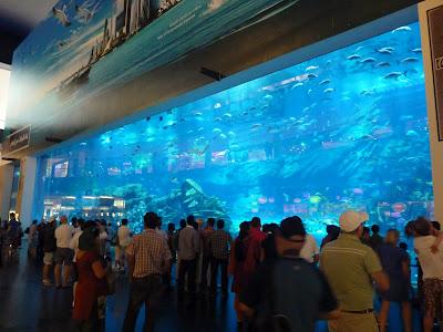 Acuario más grande del mundo, Dubai