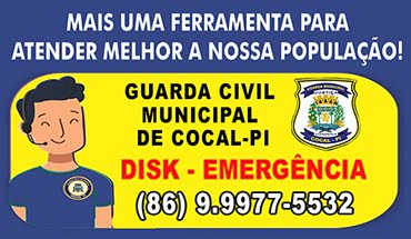 Guarda Municipal de Cocal-PI: (86) 9.9977-5532