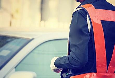 Camapaña vigilancia carreteras DGT - Fénix Directo