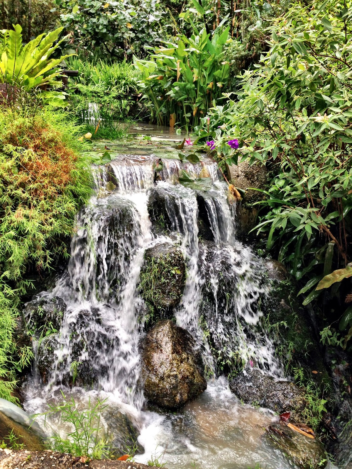 The Tropical Spice Garden Lone Crag Villa Lot 595 Mukim 2 Jalan Teluk Bahang 11100 Penang Malaysia
