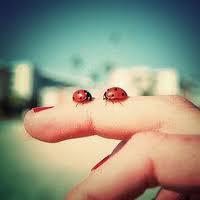 La felicidad se esconde en las cosas más pequeñas.