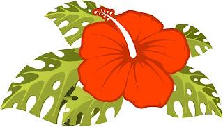 Imgenes y fondos para Fiesta Hawaiana  Ideas y material gratis